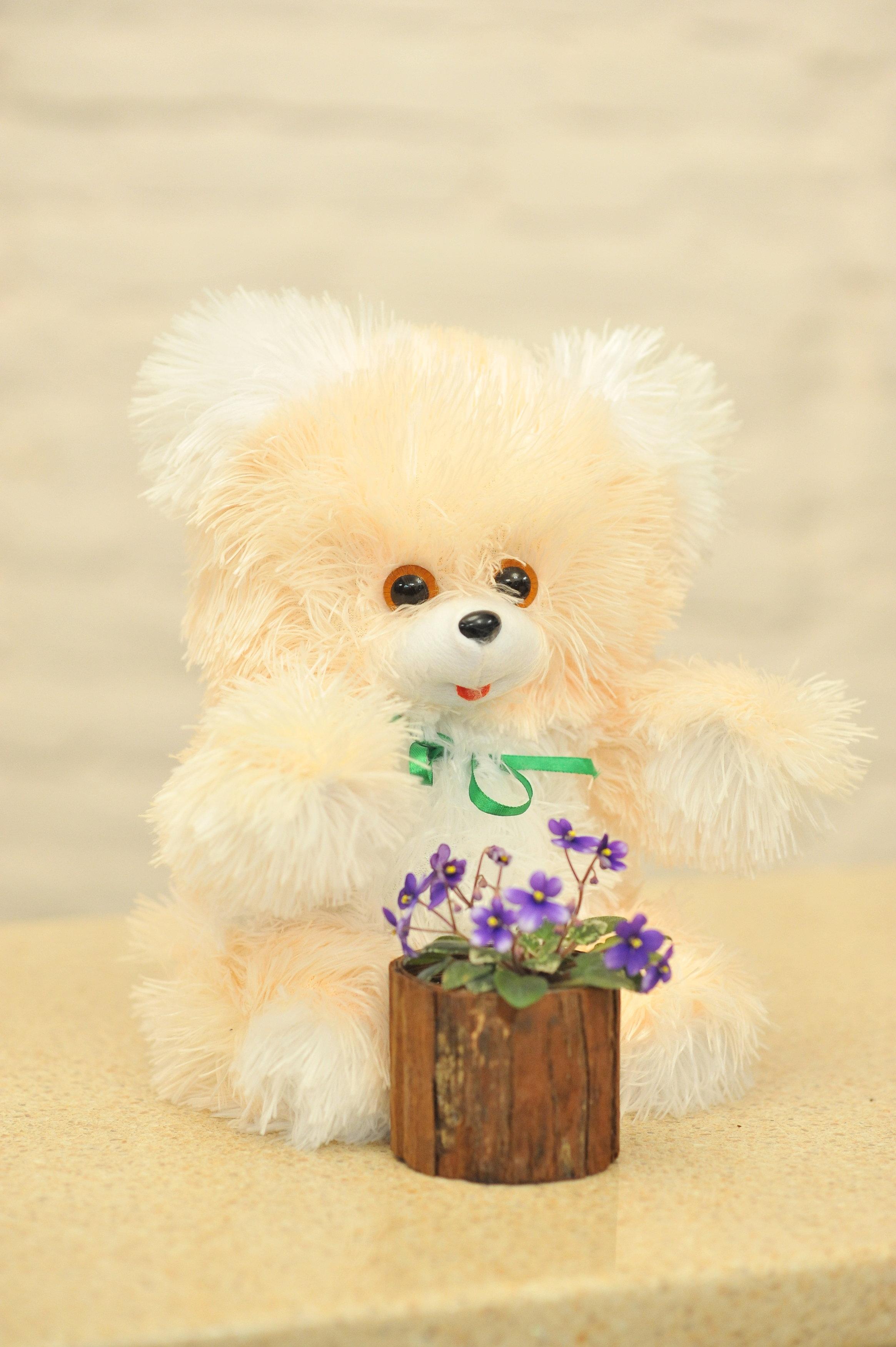 Ведмедик з фіалкою